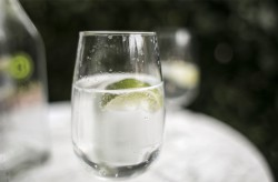 sania claus demina fashion week drink sparkling water with lime zanita healthy drink